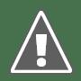 Ranking Harimau Malaya Terkini