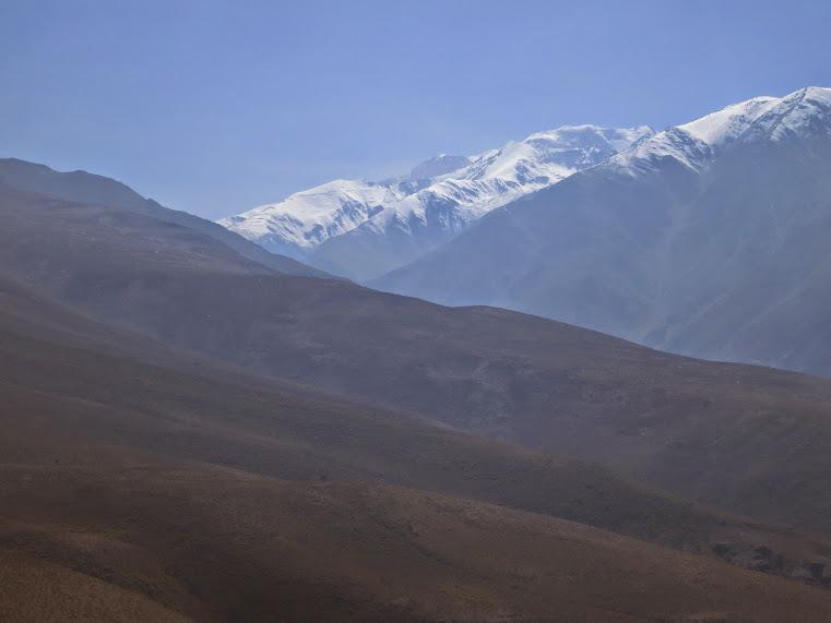 20150329 - CHILE - CERRO CANOITAS. IMG_0020
