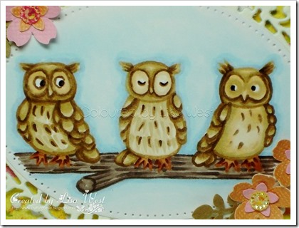 Dinkies Owls (1)