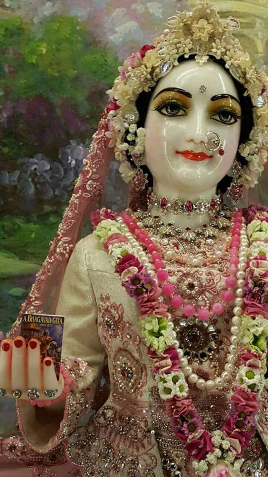 ISKCON Hungary Deity Darshan 21 Dec 2015 (4)