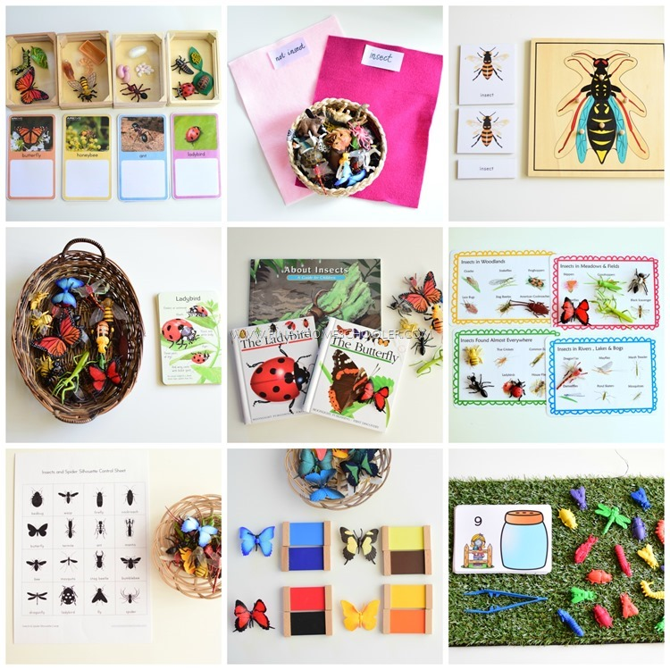 Montessori Inspired Insect Activities for Preschoolers
