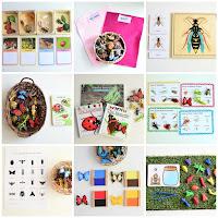 Montessori Inspired Insect Activities for Preschoolers
