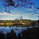 023-Nieuwjaarswandeling met de Bevers.Menno gidst ons door het mooie natuurgebied De Regte Heide te Go+»rle