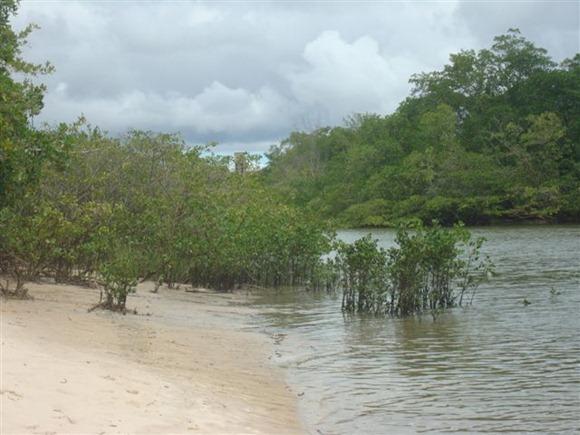 Praia de Jararaí - Sao José de Ribamar, Maranhao, foto: blogdobois.blogspot.com