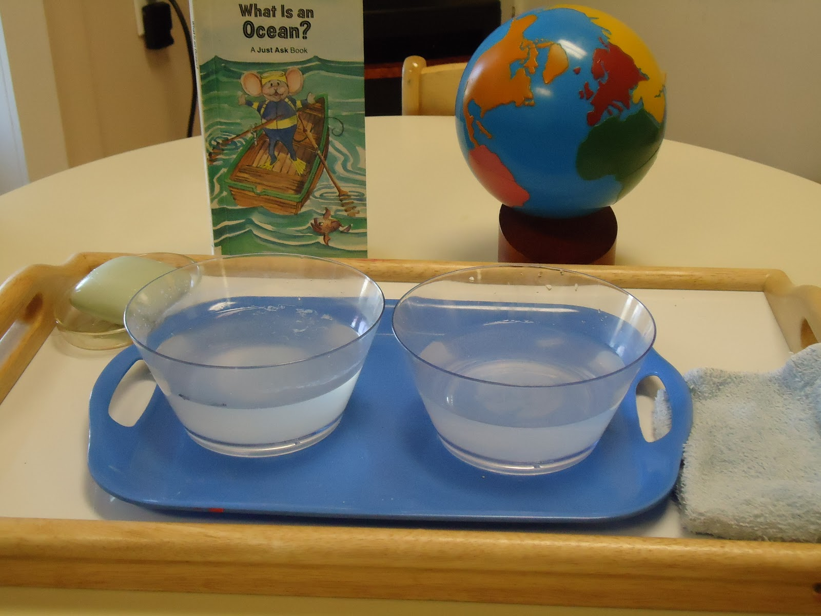 Montessori Inspired Resources For World Oceans Day
