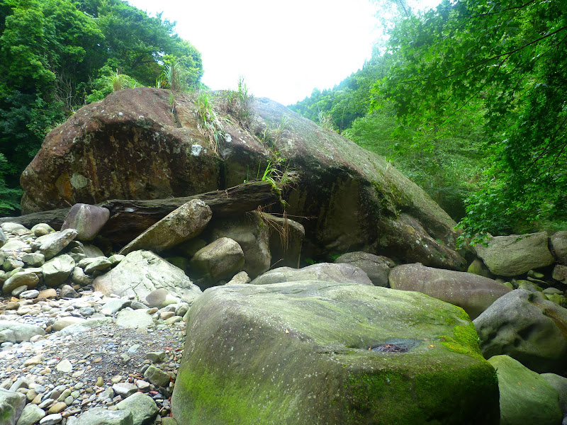Petite randonnée au sud de Taufen, dans la région de Miaoli - P1330635.JPG