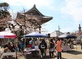 150328_teratsudo_030.jpg