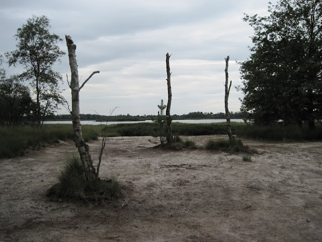 14ème Kempenlandtocht, 110/80km (Geldrop, NL): 3-4/8/2012 07-08%2520Kempenlandtocht%2520ven