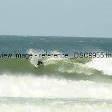 _DSC9955.thumb.jpg