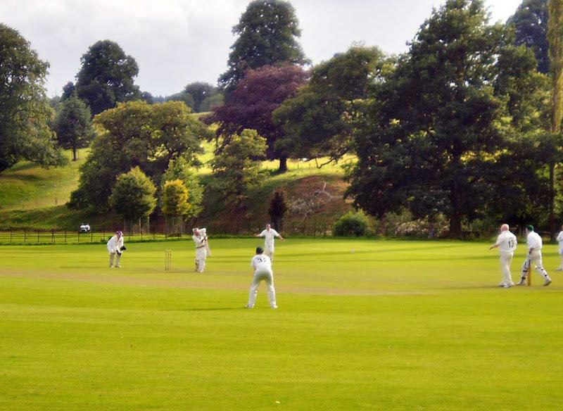 Cricket39RA