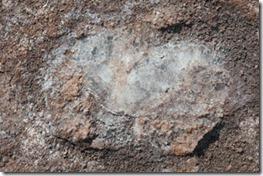 Crsital de Sal, objetivo das antigas minerações