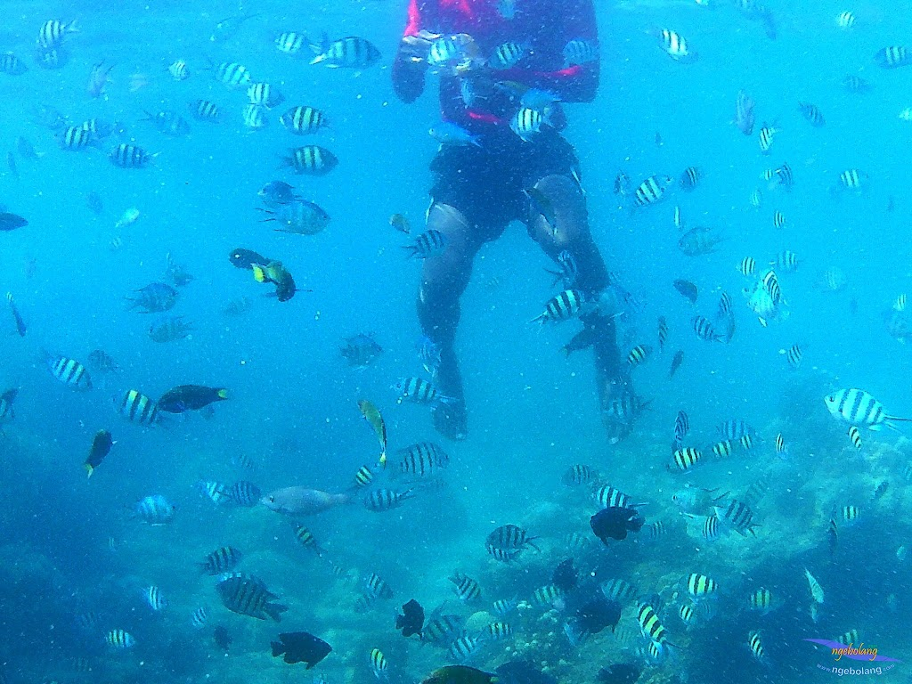 family trip pulau harapan, 1-2 agustus 2015 gopro 30
