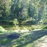 Camping area near Old Geehi Hut (294388)