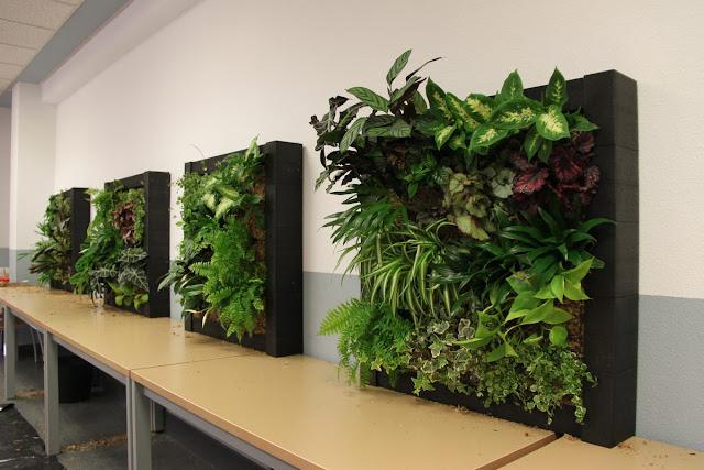 Im genes del curso de jardines verticales en madrid for Imagenes de jardines verticales