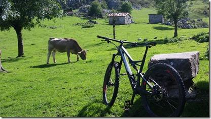 Picos_Covadonga_(12-9-2017) (31)