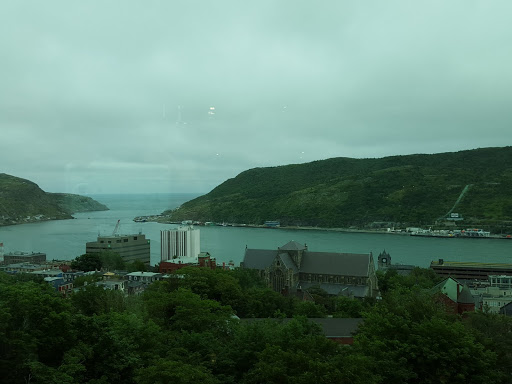 The view from The Rooms, toward downtown St. John's and the harbor. Newfoundland and Labrador History Comes Alive at The Rooms