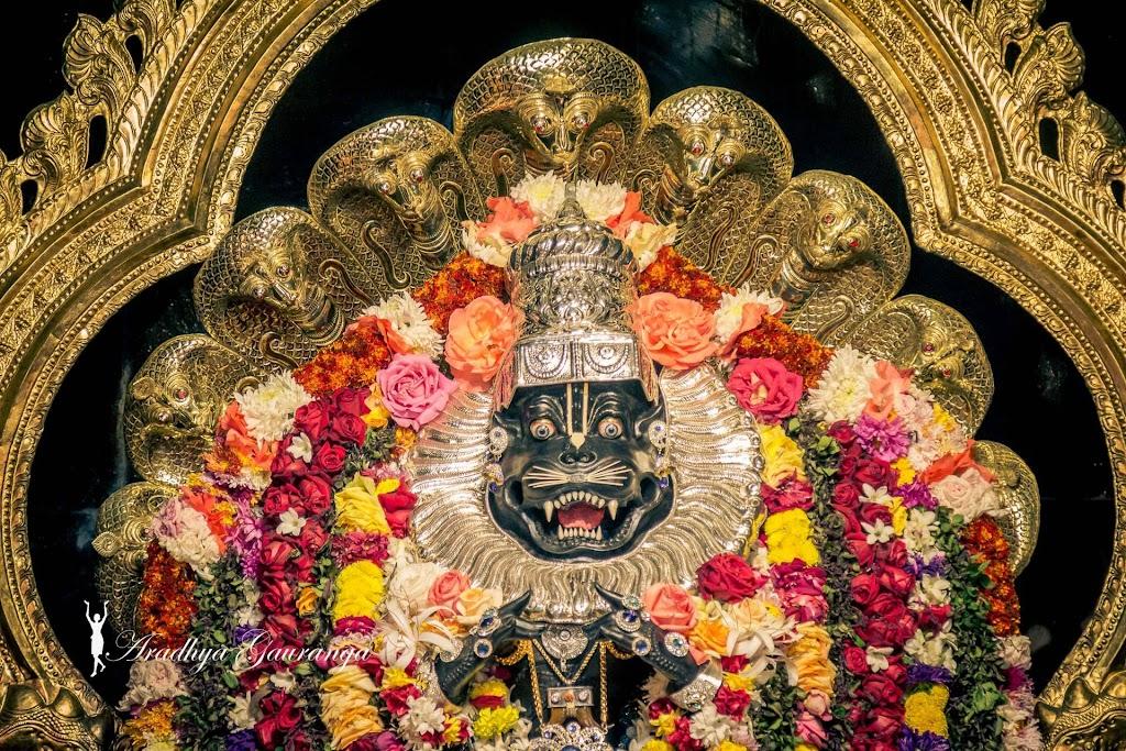 ISKCON Mayapur Deity Darshan 11 Jan 2017 (29)