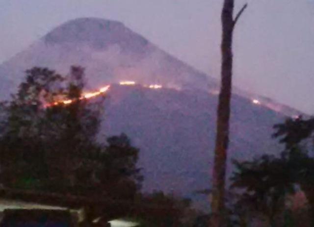 Kebakaran Hutan Gunung Penanggungan, 6 Pendaki Terjebak 3 Berhasil Dievakuasi