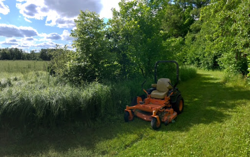 Mowing on Mother North Star, June 26th, 2017. The mowers have been running almost daily on the ski trails.