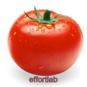 buah-tomato