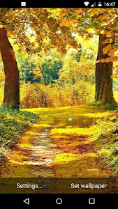 Autumn Forest Live Wallpaper screenshot 0