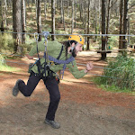 treeadventures2.jpg