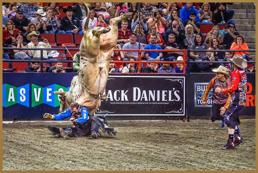 """Bullrider's Nightmare"" by Tim Snyder - 1st place General A"