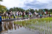 Komisi IV DPR RI Bersama Jajaran Kementan Gelar Kunjungan Spesifik Tinjau Percontohan Mina Padi