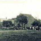 boerderij1.jpg