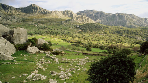 Grazalema Natural Park, Cadiz Province, Andalucia, Spain.jpg