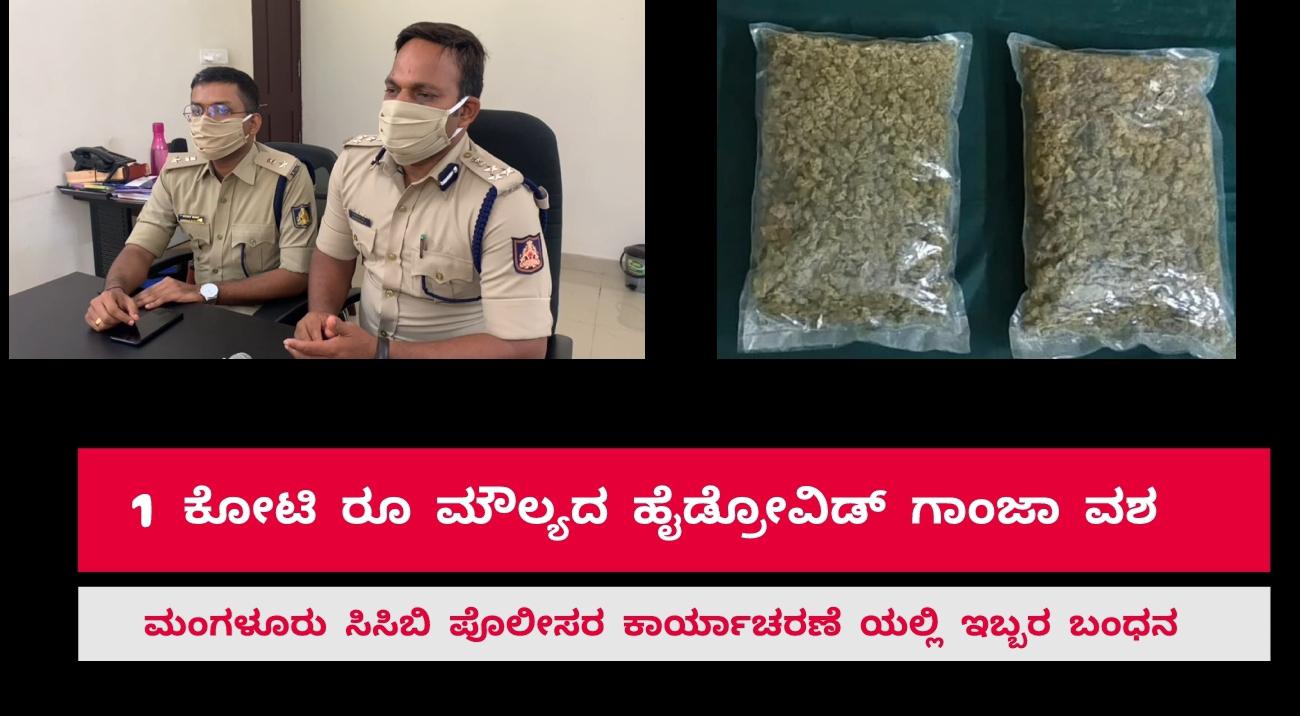 Mangalore ಒಂದು ಕೋಟಿವರೆಗಿನ ಮೌಲ್ಯದ ಹೈಡ್ರೋವಿಡ್ ಗಾಂಜಾ ವಶ- MBBS ವಿದ್ಯಾರ್ಥಿನಿ ಸಹಿತ ಇಬ್ಬರ ಬಂಧನ (video)