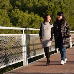 2010 06 13 Flinders University - IMG_1405.jpg