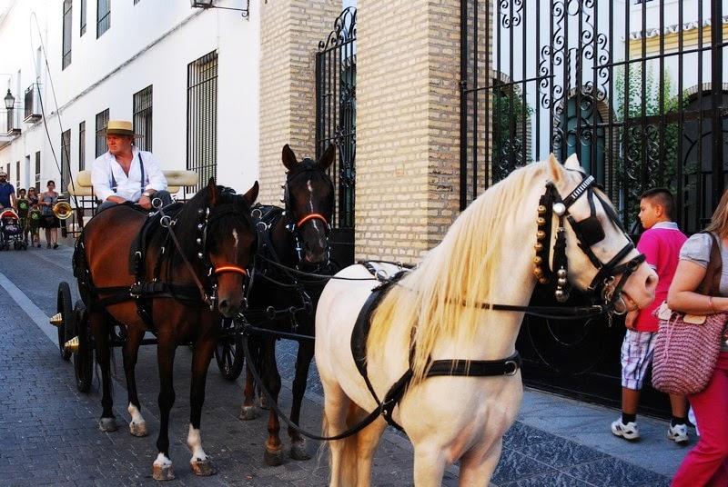 IX Bajada de Autos Locos 2012 - AL20012_015.jpg