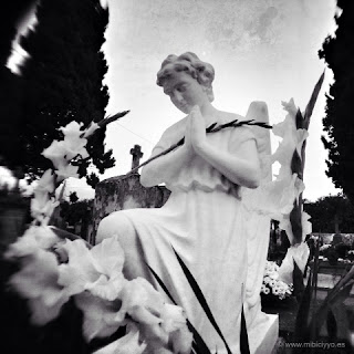 Cementerio de Genova, Palma
