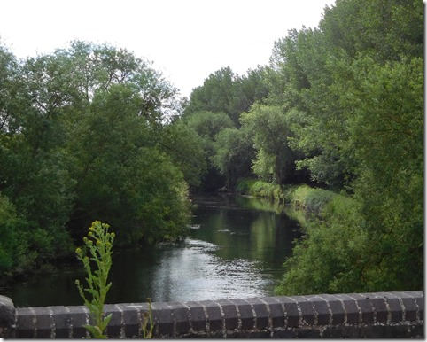 6 river tame