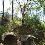 Steps uphill on the coastal walk in the Wallarah Pennisula (388700)