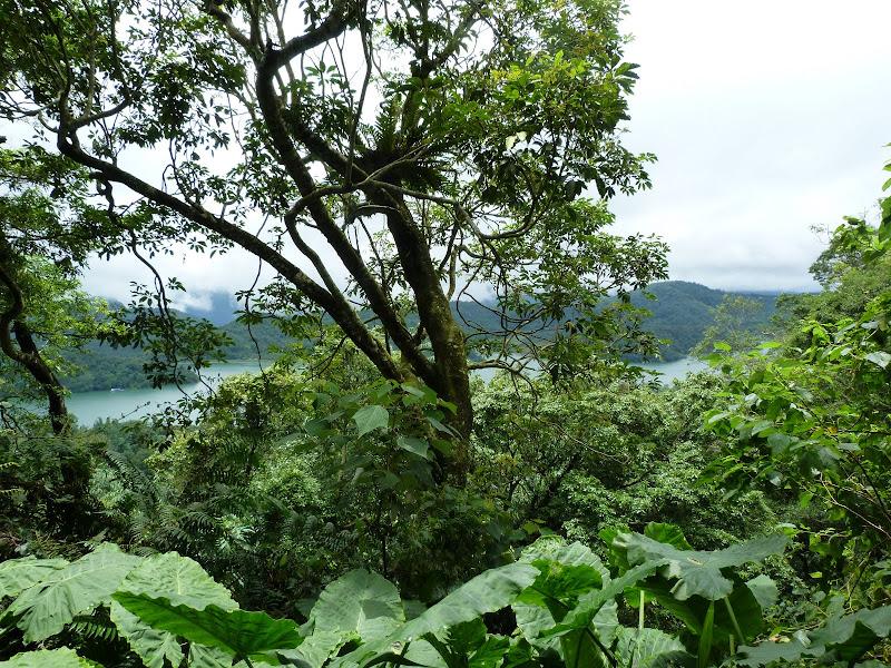 PULI . De Puli a Sun Moon Lake et un village Thao .J 6 - P1150786.JPG