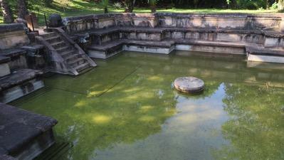 Royal Pond