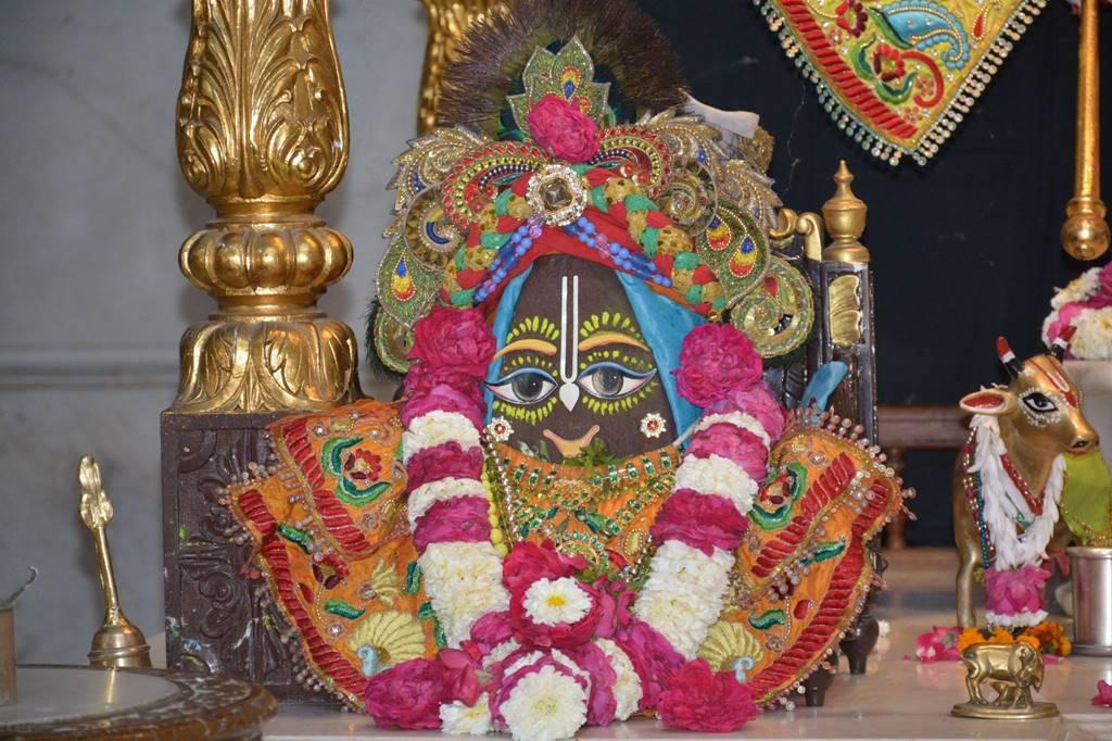 ISKCON Ujjain Deity Darshan 03 Feb 2016 (6)