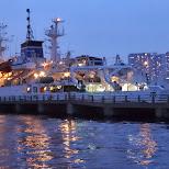 ships at the docks at the Odaiba harbor in Odaiba, Tokyo, Japan