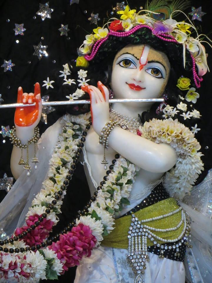 ISKCON Aravade Deity Darshan 11 May 2016 (7)