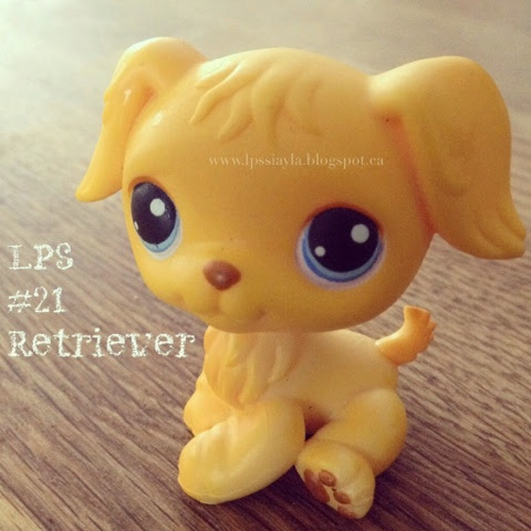 Littlest pet shop number 21