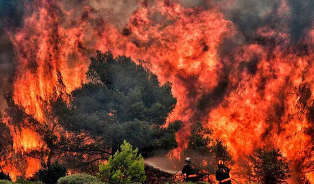 Firefighters try to extinguish flames during a wildfire at the village of Kineta, near Athens, Greece, on 24 July 2018. Photo: Valerie Gache / AFP