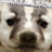 Becky Ward avatar image