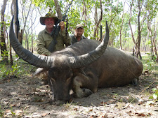 Mr Mills of Australia with an even bigger buffalo bull. Well over 100 SCI points, this old bull is a great trophy.