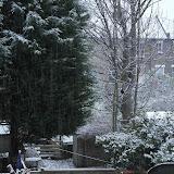 Первый снег, декабрь 2012