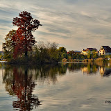Lacul Mogoșoaia