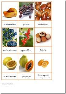 loto-frutas-en-fichas jugarycolorear (5)