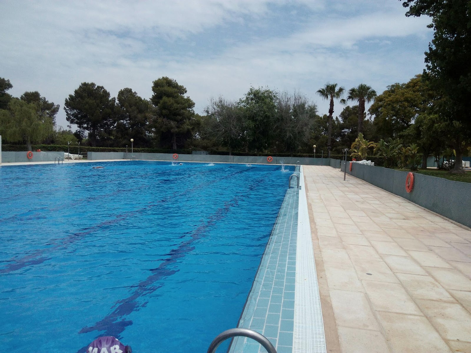 Club atletismo mandarache nataci n por relevos santa ana for Metros piscina olimpica