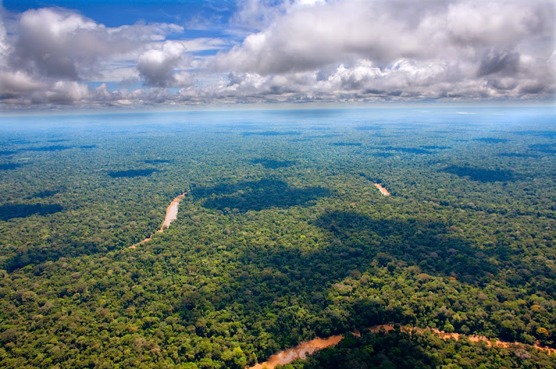 A bird's eye view of the Amazon Rainforest, one of the world's greatest natural resources. Because its vegetation continuously recycles carbon dioxide into oxygen, it has been described as the